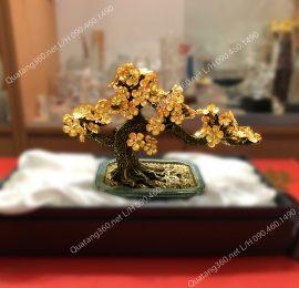 hoa mai ngũ phúc dát vàng